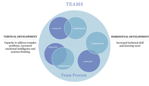 Competency and Capacity in teams
