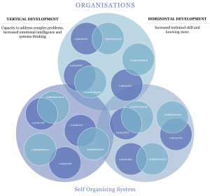 Competency and Capacity in Organisations